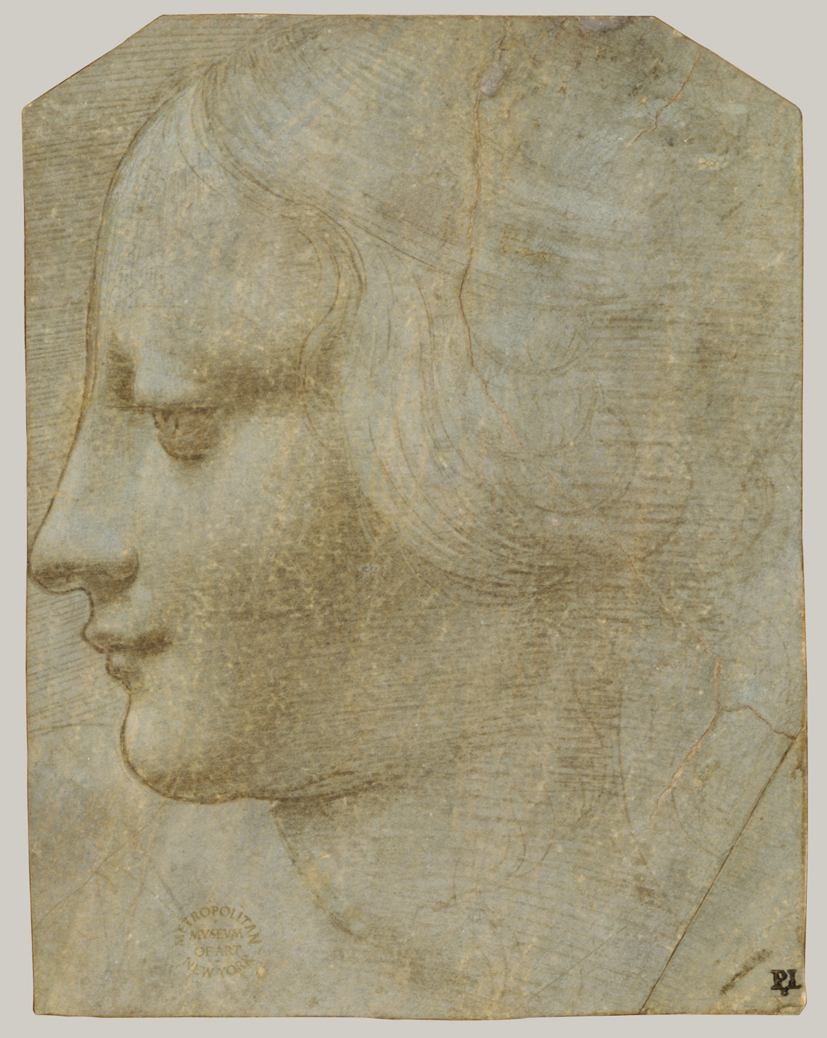 Head of a Woman in Profile to Lower Left