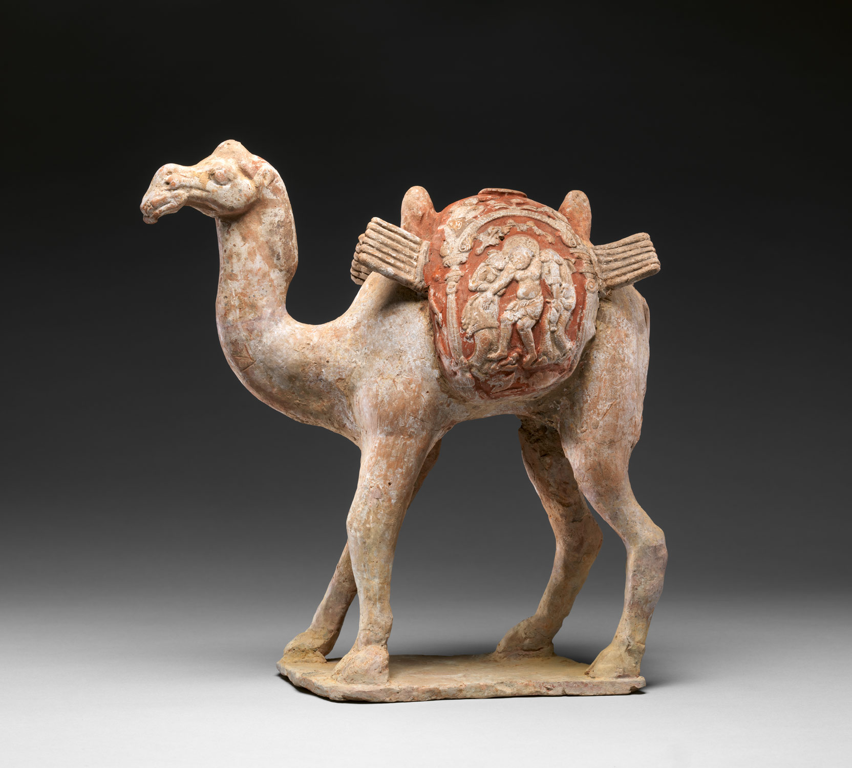 Camel with packboards and baggage