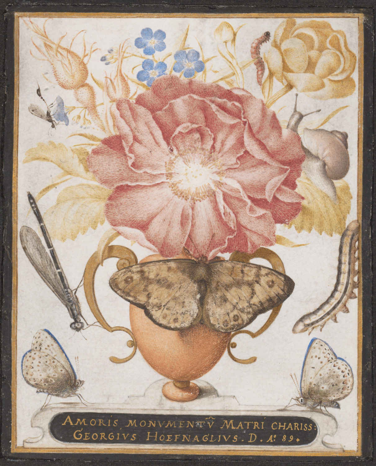 Still Life with Flowers, a Snail, and Insects