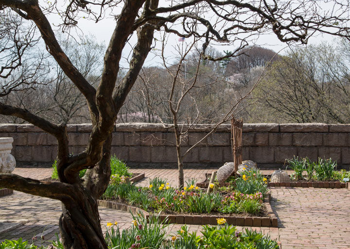 View of the Bonnefont Herb Garden at The Met Cloisters overlooking the Hudson River