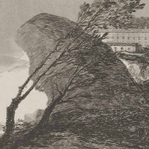 Goya etching of a windswept country landscape