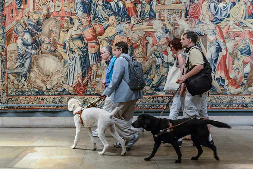 Visitors walking through the galleries with their assistance dogs