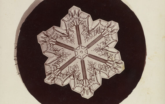 Early photograph of a snowflake, or snow crystal