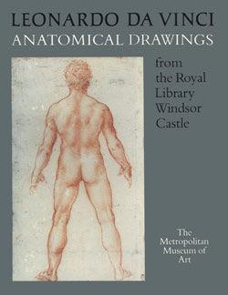 Leonardo Da Vinci Anatomical Drawings From The Royal Library Windsor Castle Metpublications The Metropolitan Museum Of Art