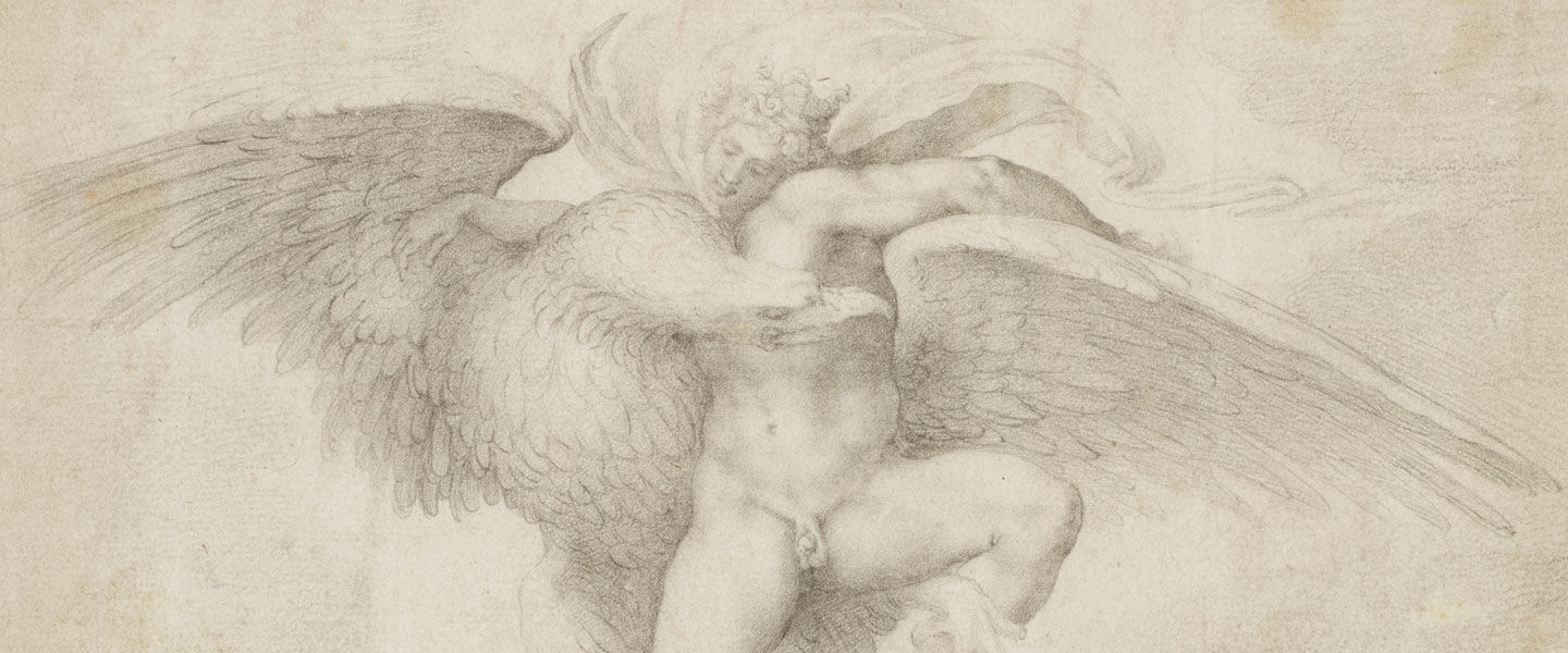 Detail view of Michelangelo's drawing 'Rape of Ganymede,' showing a shepherd boy struggling against an attack by an eagle