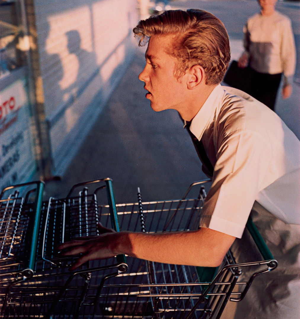 William Eggleston: Los Alamos - The Metropolitan Museum of Art, New York 2018-05-25 23:30