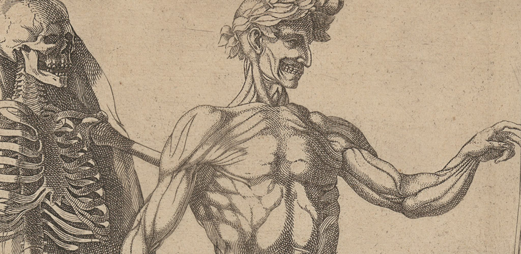 Anatomy in the Renaissance | Essay | Heilbrunn Timeline of Art ...