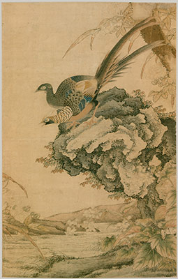 Two Pheasants on a Rock