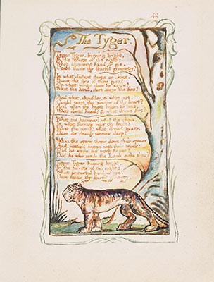 William Blake   Essay  Heilbrunn Timeline Of Art  Songs Of Innocence And Of Experience The Tyger