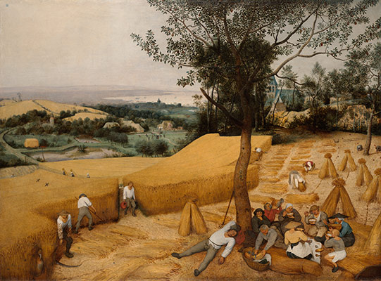 genre painting in northern europe essay heilbrunn timeline of  the harvesters
