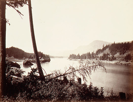 View on the Columbia, Cascades
