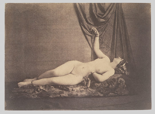 [Female Nude, Reclining, in Profile]
