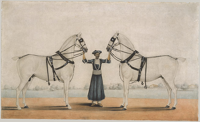 A Syce (Groom) Holding Two Carriage Horses