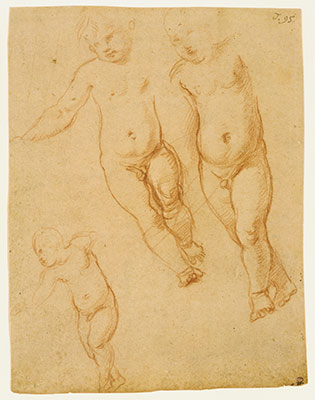 Studies of the Christ Child