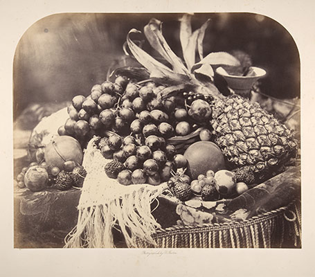 [Still Life with Fruit]