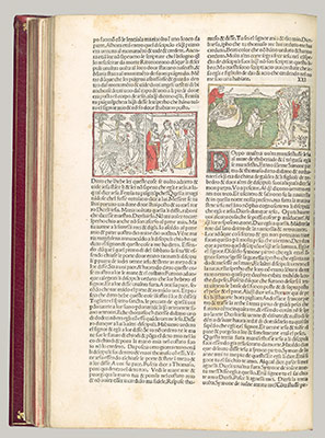 The Malermi Bible, vol. II