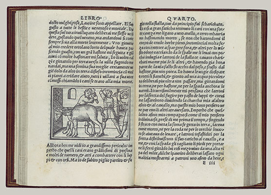 Woodcut Book Illustration In Renaissance Italy Venice In