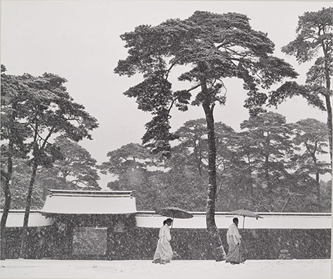 In the Court of the Meiji Temple, Tokyo, Japan