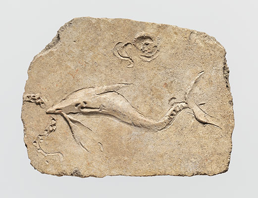 Stucco mural relief fragment of a dolphin