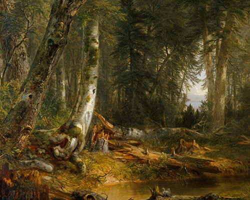 In The Woods Asher Brown Durand 95 13 1 Work Of Art