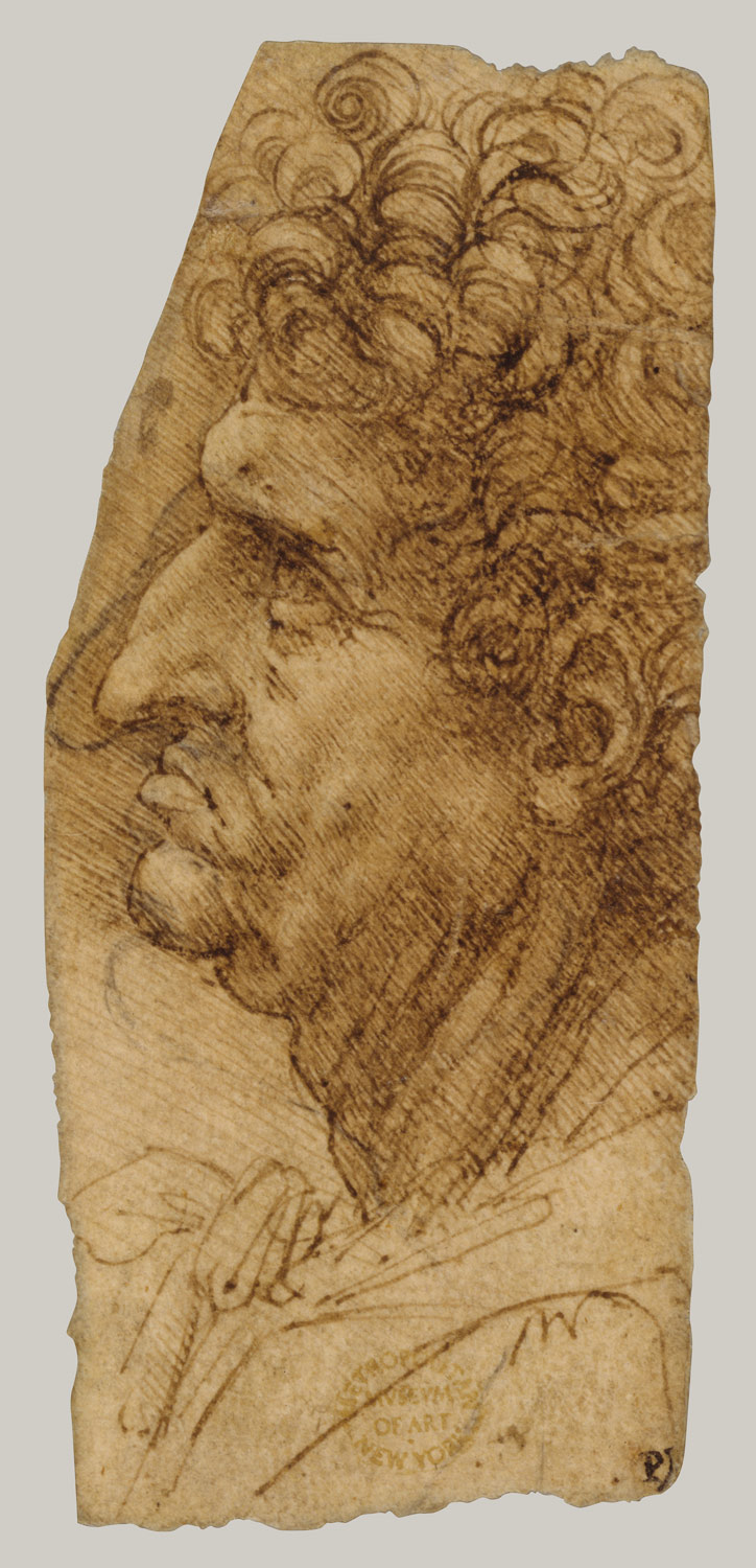 Head of a Man in Profile to Left