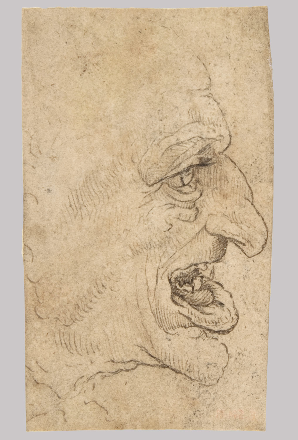 Grotesque Head: Man in Profile to Right