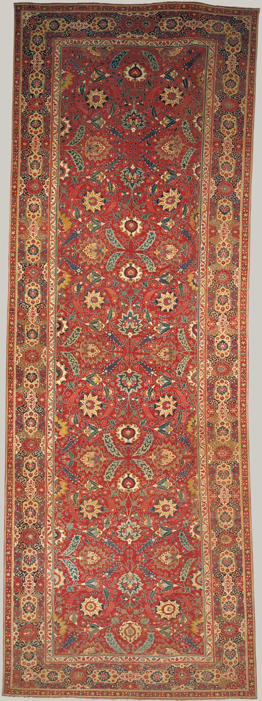 ... Carpet Carpet ...