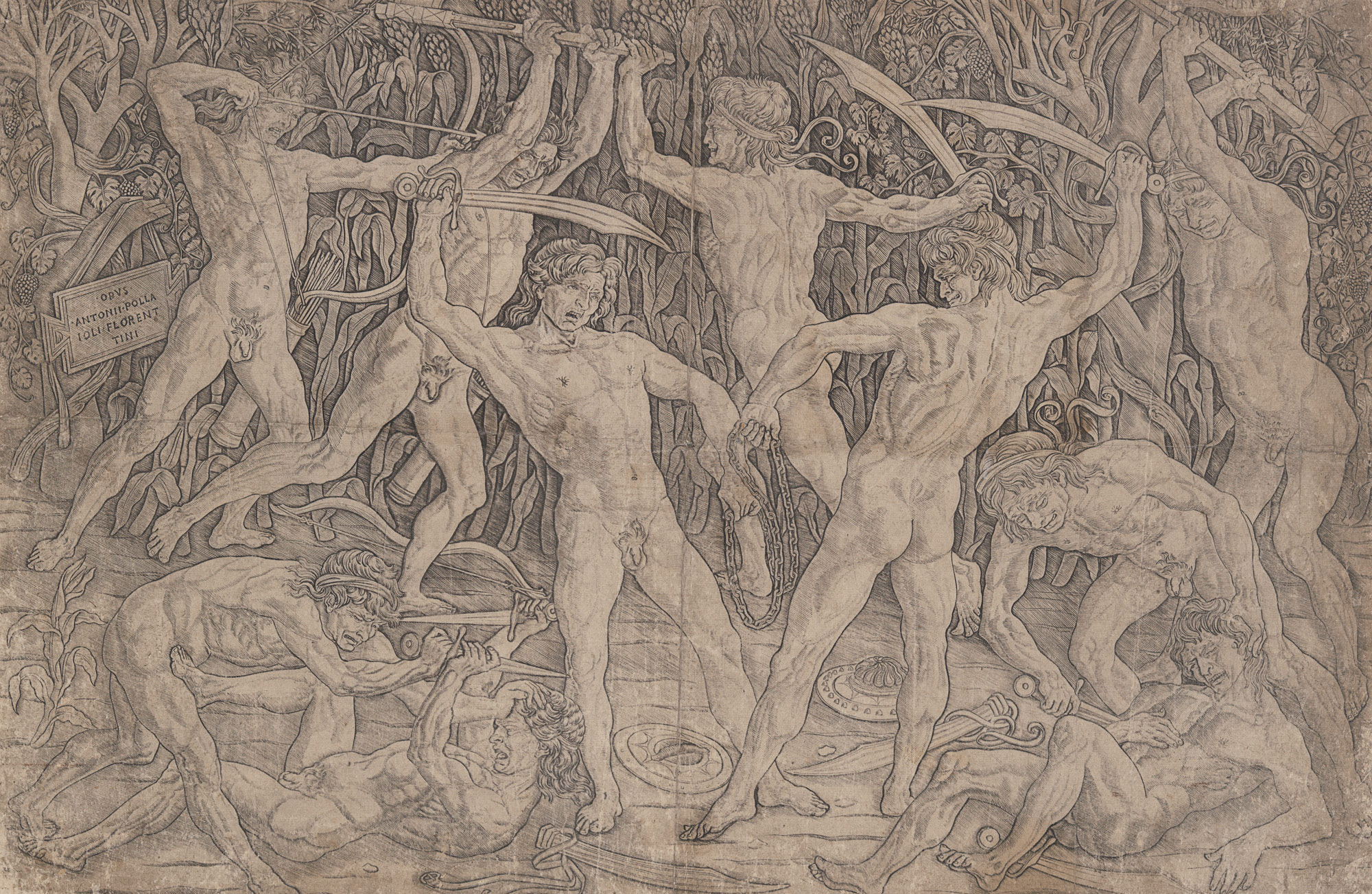 anatomy in the renaissance essay heilbrunn timeline of art  battle of naked men