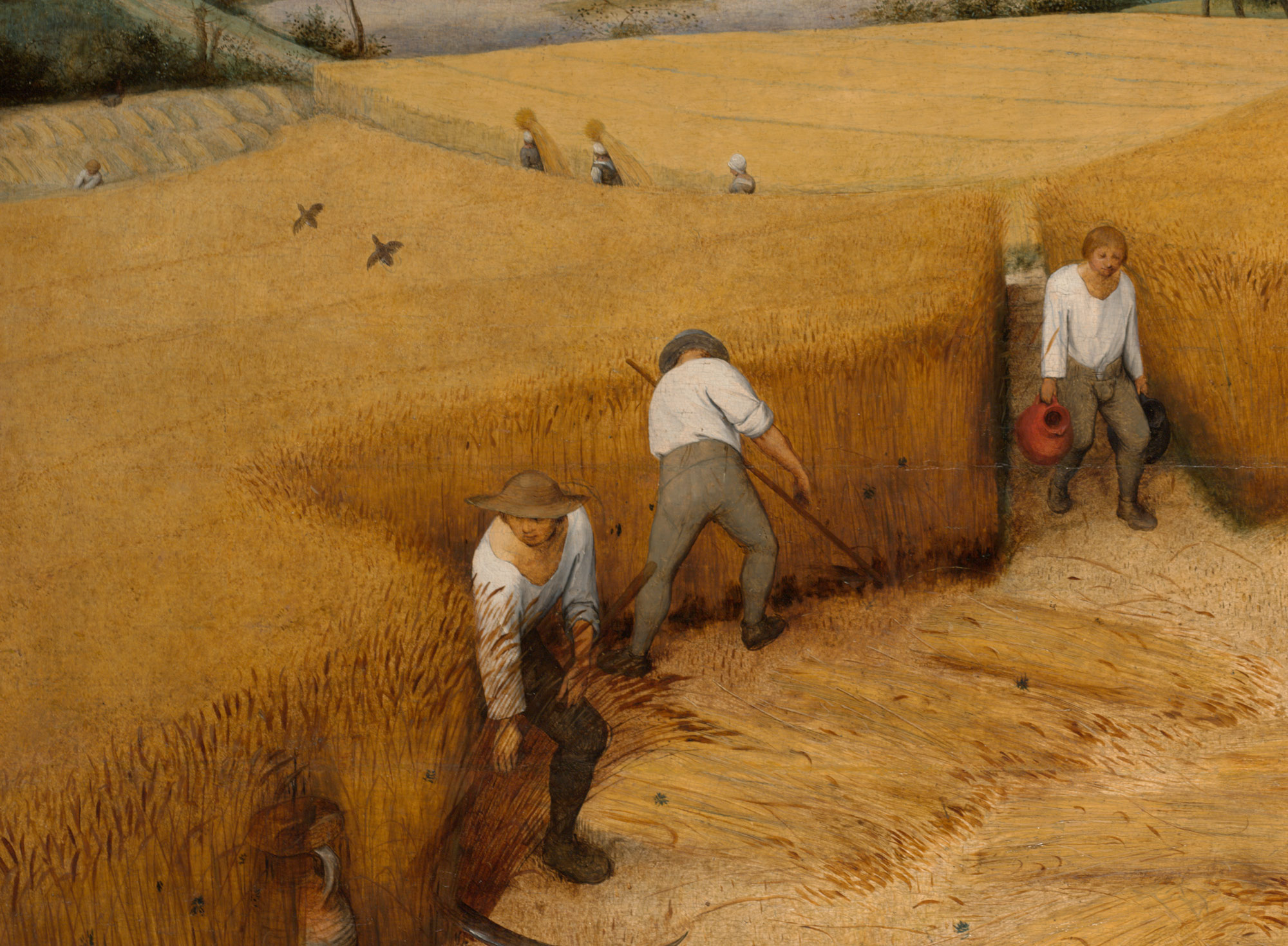 The Harvesters Pieter Bruegel The Elder 19 164 Work