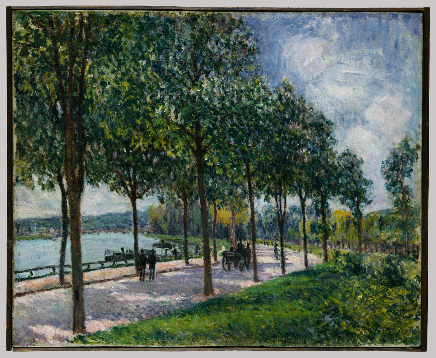 Allée of Chestnut Trees