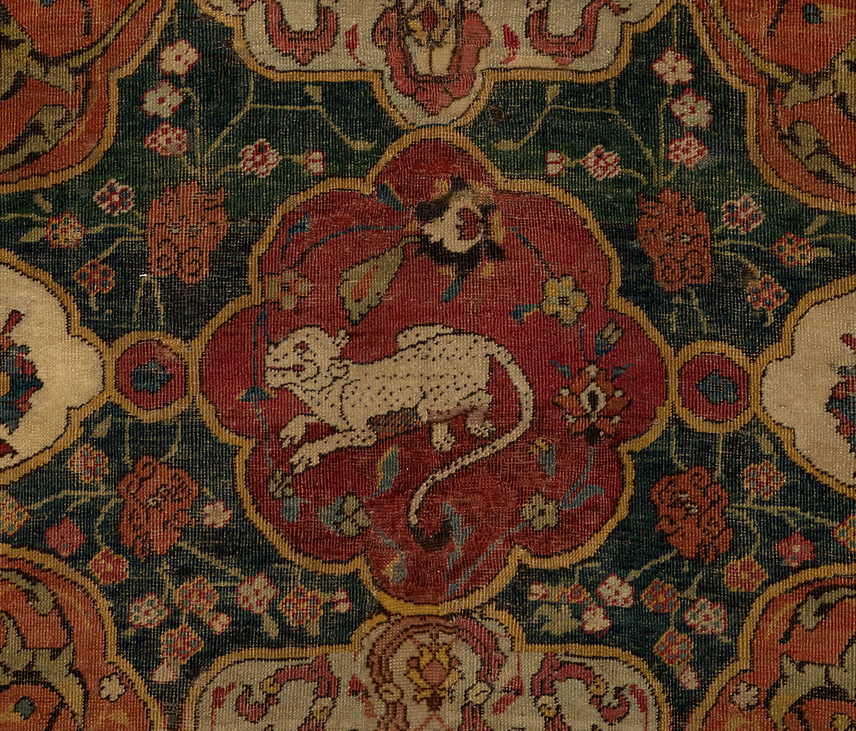 The Seley Carpet