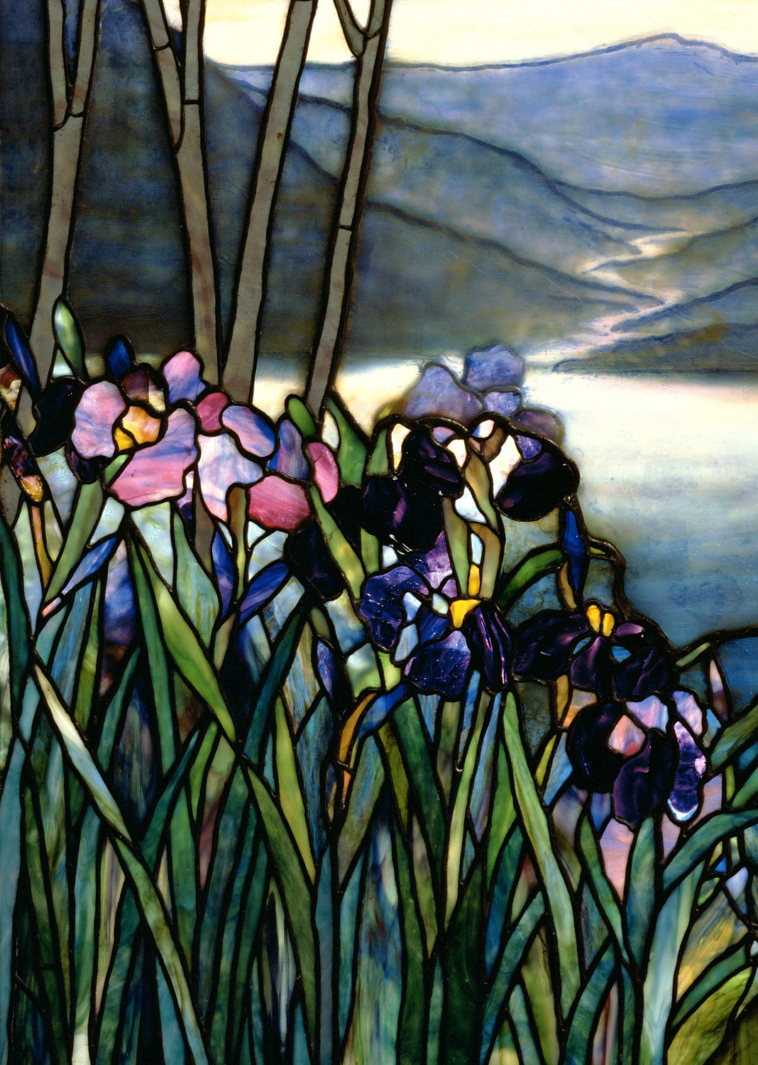 Magnolias and Irises