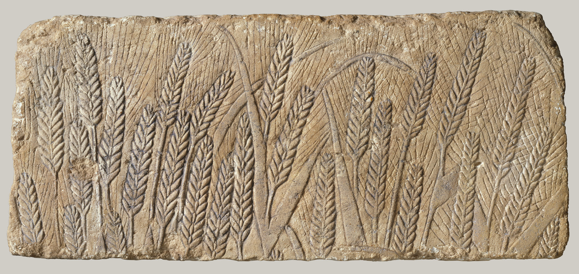 in the new kingdom ca b c essay heilbrunn ripe barley