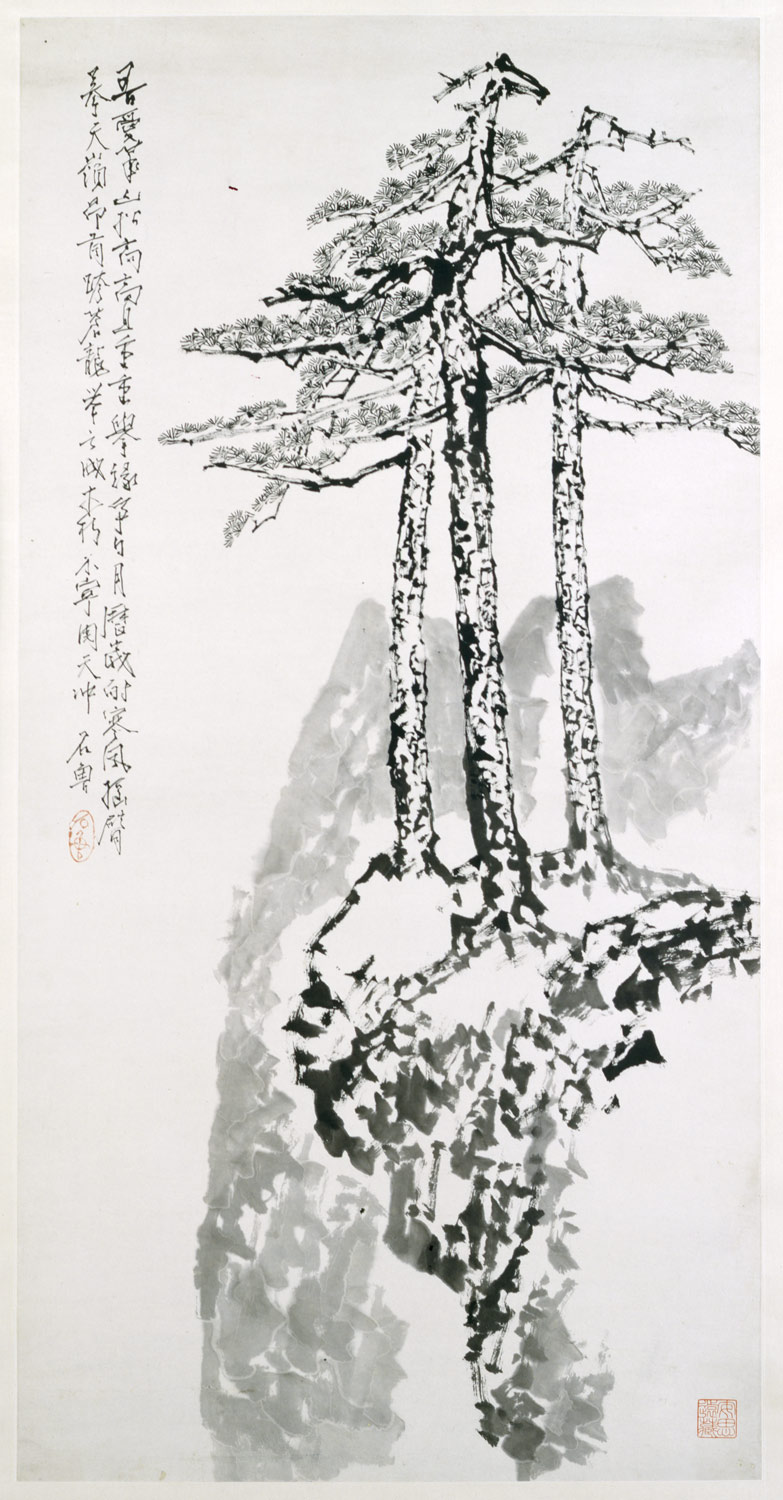 Stately Pines on Mount Hua