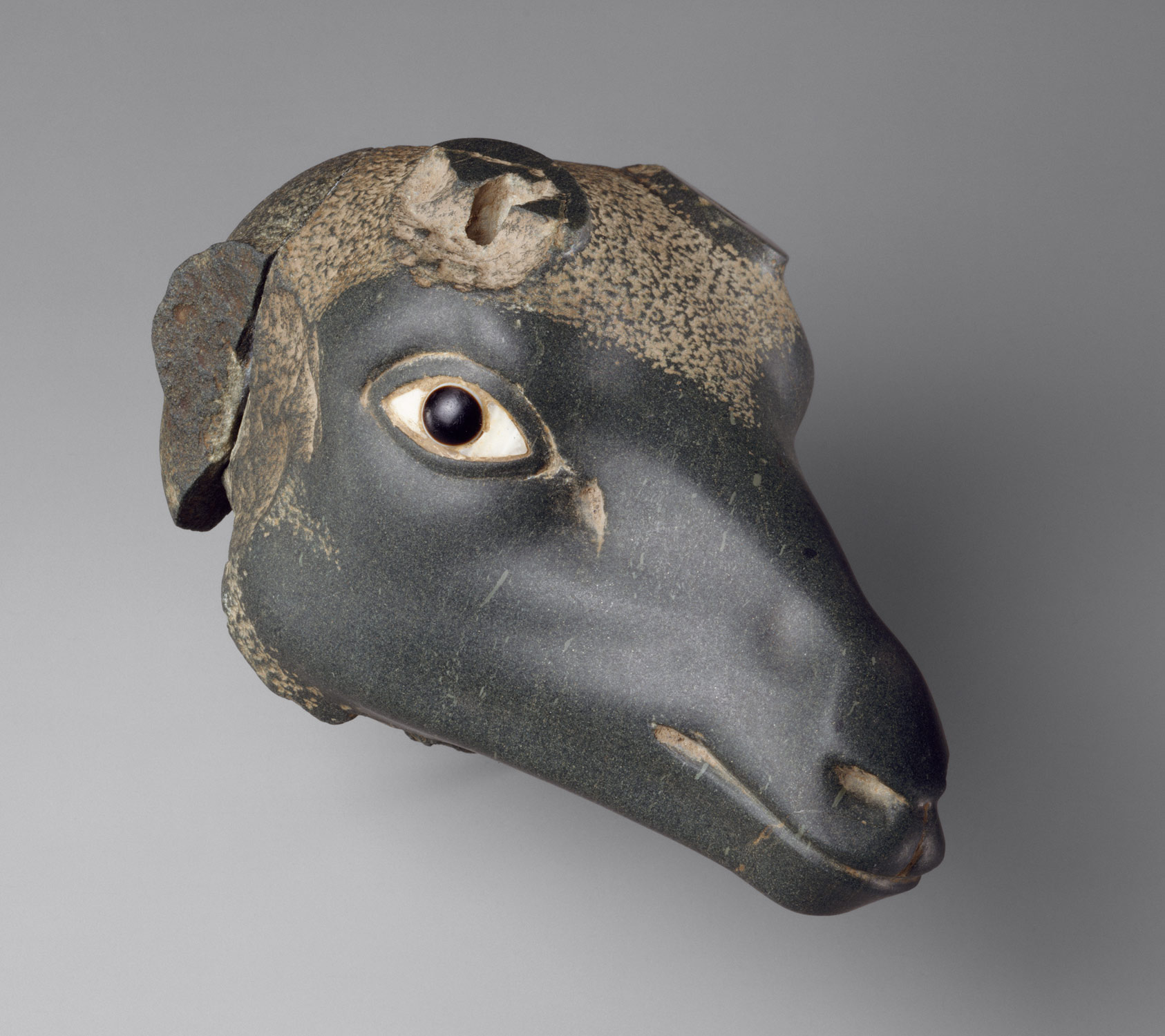 in the late period ca 712 332 b c essay heilbrunn antelope head