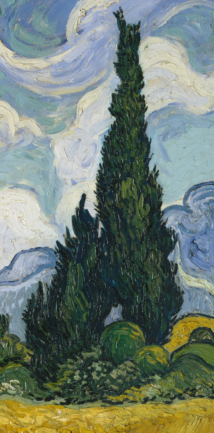 Wheat Field With Cypresses Vincent Van Gogh 1993 132