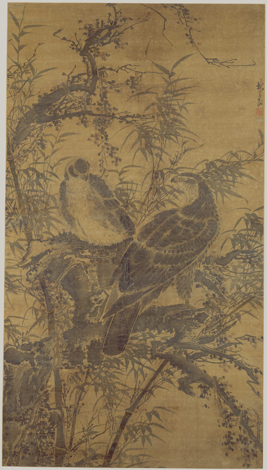 Two Hawks in a Thicket