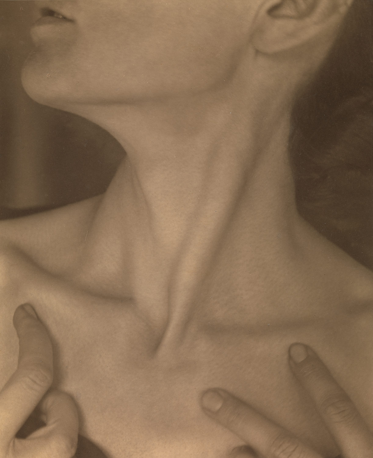 Georgia OKeeffe — Neck