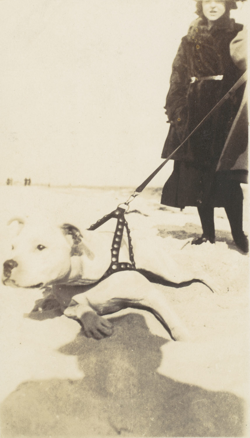 [Woman and Dog on Beach, Far Rockaway, New York]