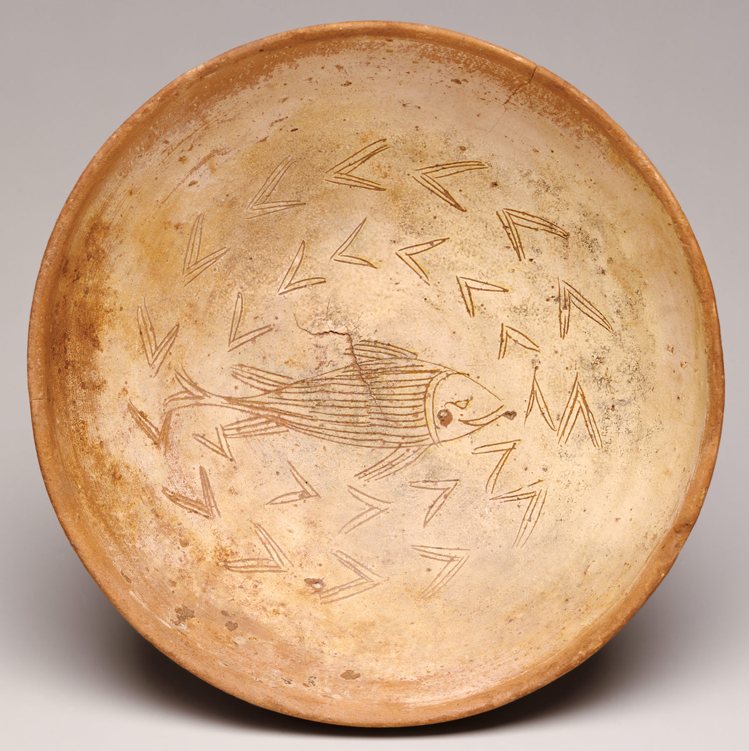 Bowl with Fish