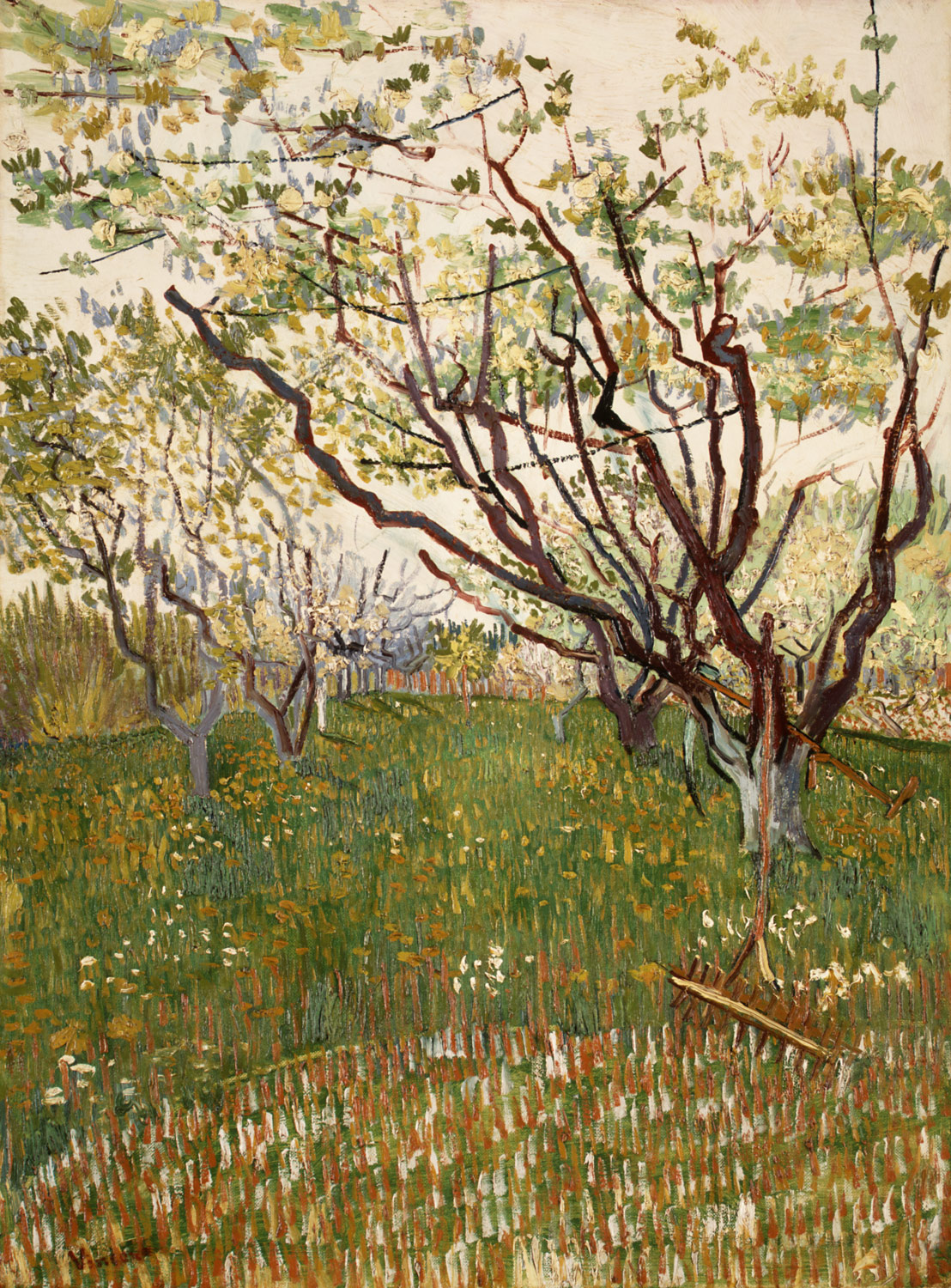 vincent van gogh essay heilbrunn timeline of art the flowering orchard