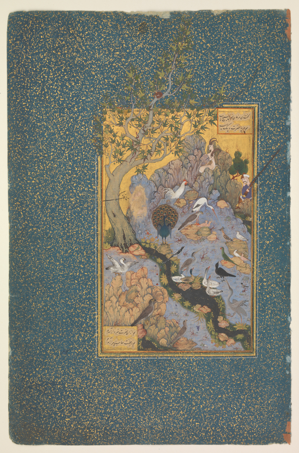 The Concourse of the Birds, Folio 11r from a Mantiq al-tair (Language of the Birds)