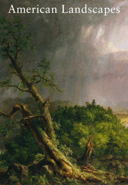 American Landscapes: Thomas Cole (American, 1801–1848) | View from Mount Holyoke, Northampton, Massachusetts, after a Thunderstorm—The Oxbow (detail), 1836 | 08.228
